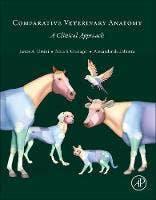 Comparative Veterinary Anatomy: A Clinical Approach